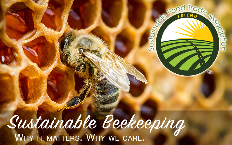 sustainable beekeeping